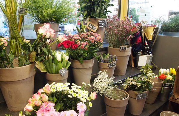 Floristik & Schnittblumen für jeden Anlass