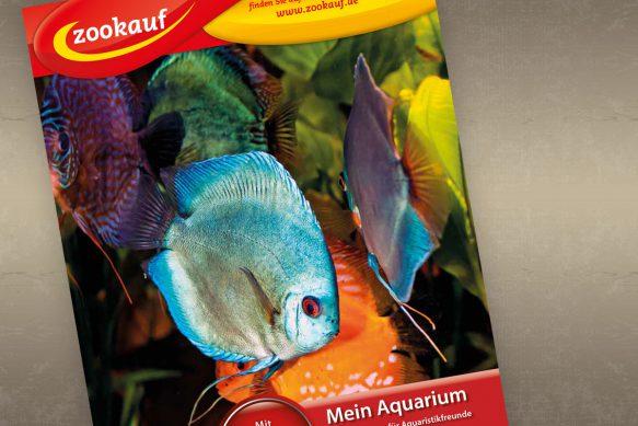 Tauchen Sie ein in das faszinierende Hobby Aquaristik.